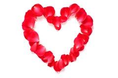 Röd rosa petalhjärta på vit fotografering för bildbyråer