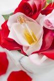 Röd rosblomma med rosolja Arkivbilder