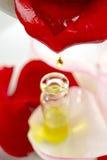 Röd rosblomma med rosolja Royaltyfria Foton