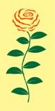 Röd rosillustration Fotografering för Bildbyråer