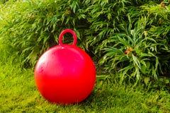 Röd Rubber boll Royaltyfri Foto