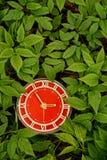 Röd rund klocka i ett grönt gräs Royaltyfri Foto