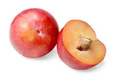 Röd rund plommon hela half limefrukter Isolerat på den vita närbilden royaltyfri bild