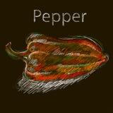 Röd saftig peppar på svart bakgrund. Arkivfoton