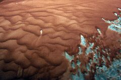 Röd sand i rörelse arkivbilder