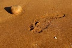 Röd sandlängd i fot räknat Royaltyfri Bild