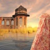 Röd saree Royaltyfri Fotografi