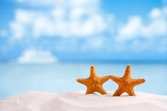 Röd sjöstjärna med havet, stranden, himmel och seascape Arkivbilder