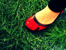 röd sko Arkivbilder