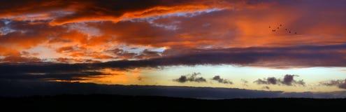 röd sky Royaltyfri Foto