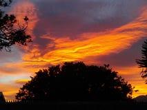 röd sky Royaltyfri Fotografi