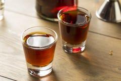 Röd slån Gin Liqueur Royaltyfria Foton