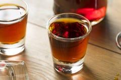Röd slån Gin Liqueur Fotografering för Bildbyråer