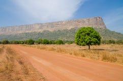Röd smuts- och grusväg, enkla träd och stort plant överträffat berg i den Fouta Djalon regionen, Guinea, Västafrika Royaltyfri Fotografi