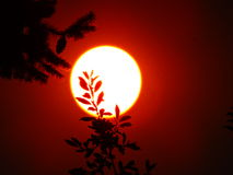 Röd sol i rökig himmel Arkivbild