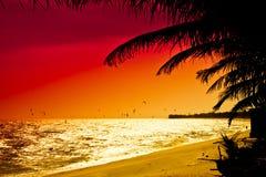 Röd solnedgång i Mui Ne Arkivfoto