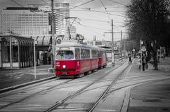 Röd spårvagn i Wien Royaltyfri Fotografi