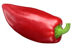 Röd spansk peppar Grueso de Plaza Arkivbilder