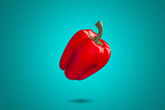 Röd spansk peppar på blå bakgrund Colorfull Arkivbilder