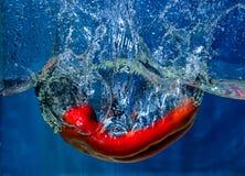 Röd spansk peppar som faller i vatten med färgstänk fotografering för bildbyråer