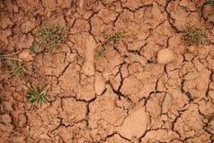 Röd sprucken jordbakgrund med grönt gräs arkivbild