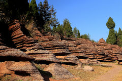 Röd stenskog i Hunan, Kina Fotografering för Bildbyråer