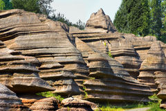 Röd stenskoggeologi parkerar i det hunan landskapet, Kina Arkivfoton