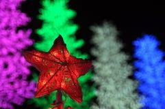 Stjärnaprydnad Royaltyfria Bilder