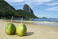Röd strand Rio de Janeiro för brasilianska CocoGelado kokosnötter Royaltyfri Foto