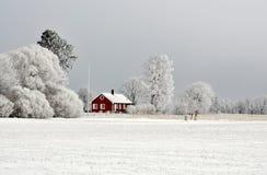 Röd stuga i vinter Royaltyfri Bild