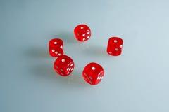 Röd tärning på exponeringsglaset Fem tärning med värdet av ` för ` en, arkivbilder