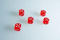 Röd tärning på exponeringsglaset Fem tärning med värdet av ` för ` fem, arkivfoton