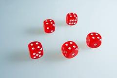 Röd tärning på exponeringsglaset Fem tärning med värdet av ` för ` fyra, arkivfoto