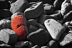 Röd tegelsten för singel Arkivfoto