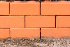 Röd tegelstenvägg royaltyfri bild