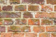 Röd tegelstenvägg Royaltyfri Foto
