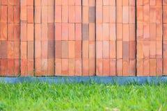 Röd tegelstenvägg med gräsgolvet Royaltyfria Foton