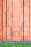 Röd tegelstenvägg med gräsgolvet Royaltyfri Fotografi