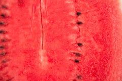 Röd textur av den söta vattenmelon Kopiera utrymme bakgrund av den röda melon Söt helg Royaltyfri Fotografi