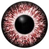 Röd textur för Alergic öga 3d med svart frans royaltyfria bilder