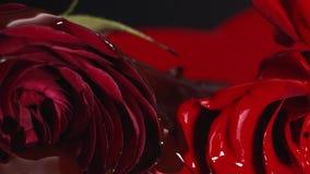 Röd textur för målarfärgläppstiftflytande, oljamålarfärg för att måla, blandande skuggor, konst utgör kosmetiskt för blomning för