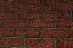 röd texturerad vägg för tegelsten Royaltyfri Fotografi