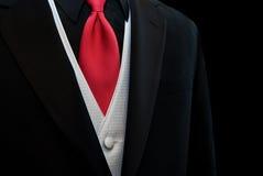 röd tie royaltyfri foto