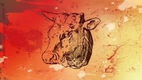 Röd tjur Arkivbilder