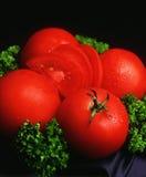 röd tomat Fotografering för Bildbyråer