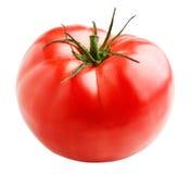 röd tomat Royaltyfria Foton