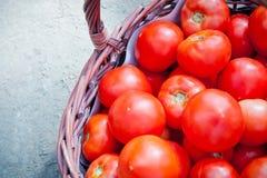 Röd tomat i en vide- korg Arkivfoto