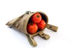 Röd tomat i tidskriftdropppåse på vit bakgrund arkivfoton