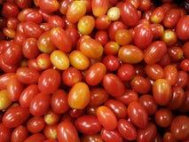 Röd tomatbakgrund Royaltyfri Foto