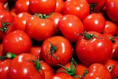 Röd tomatbakgrund Top beskådar Royaltyfria Foton